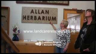 Allan Herbarium upgrade