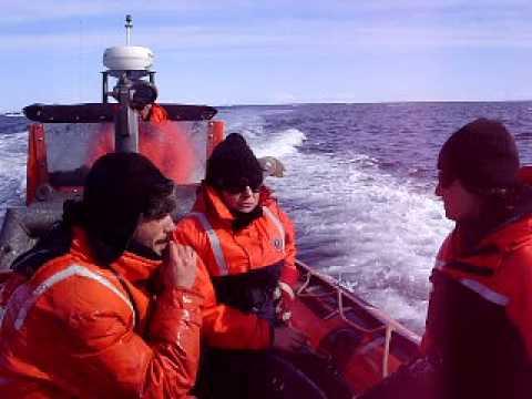 Zodiac, Arctic Ocean, Amundsen gulf.