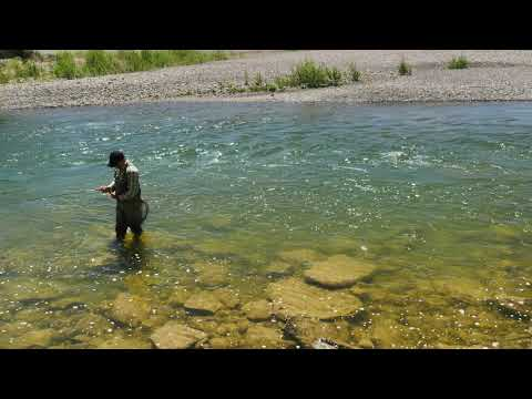 Orvis: How To Give The Fish What They Want