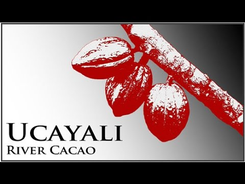 Ucayali River Cacao