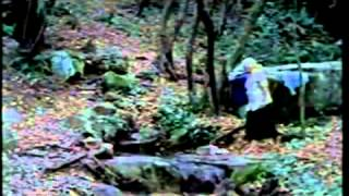 Trailer HAMACA PARAGUAYA (ARG/F/AT/PAR 2006) von Paz Encina