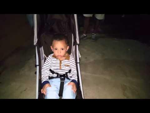 Night bali zoo 2