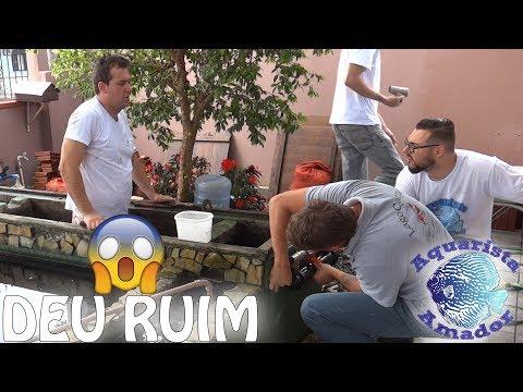 DEU RUIM! Problemas