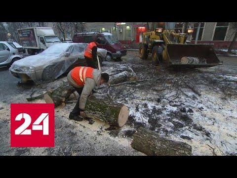 Москвичам придется пережить неделю снегопадов и скачков давления - Россия 24