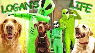 Logan and friends not impressed with Alien Invasion Dance Party