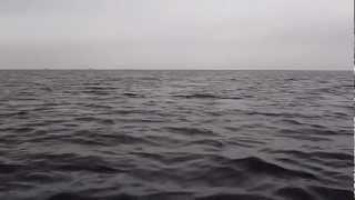 13日朝6時、鎌倉材木座海岸から、いつもの釣りバカコンビの川越名人とカ...