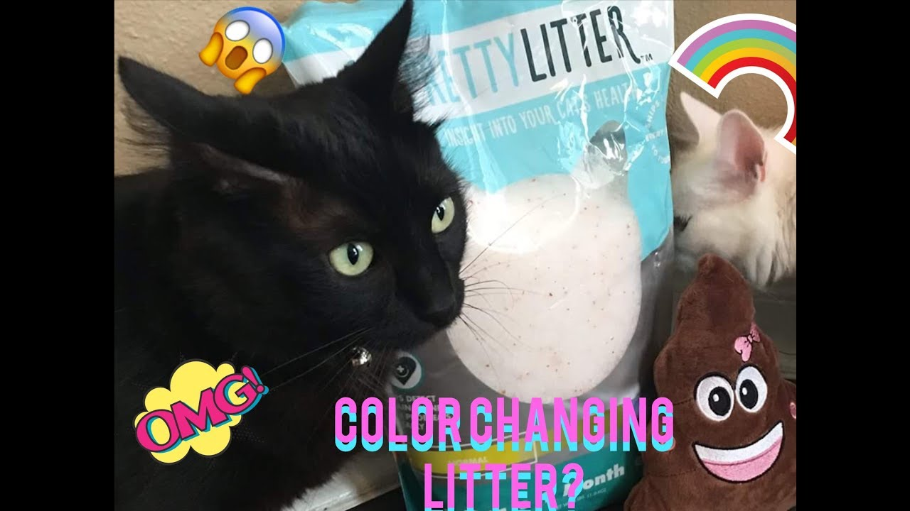 Color Changing Litter My Pretty Litter Review Youtube