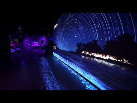 d'strict_1704_Sea at Night sat Busan Sea Life Aquarium_Digital theme park_Korea
