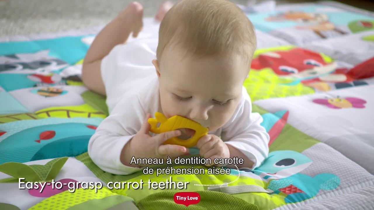 7388e5b0ed1f02 Tapis d éveil géant DANS LA PRAIRIE de TINY LOVE - YouTube