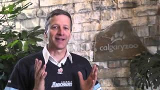 Calgary Zoo Grey Cup Challenge Response 2012