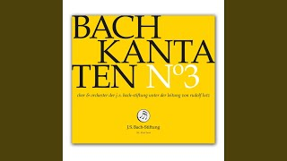 BWV 35 - Geist und Seele wird verwirret: Arie (Alt) - Gott hat alles wohlgemacht