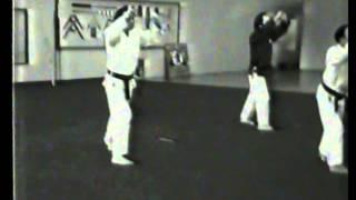 Sanchin   Bill & Dan 1981