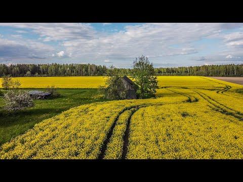 2020 spring in Latvia (Madliena)