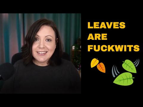 Leaves are Fuckwits - How to be Zen During Lockdown Like Me
