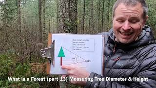 Measuring Tree Diameter aฑd Height - What is a Forest (part 13)