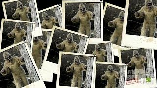 Photographic Proof? | Finding Bigfoot: Rejected Evidence
