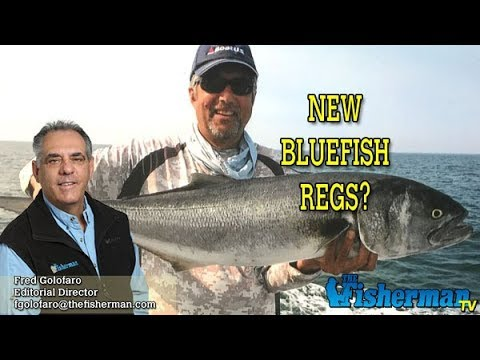 December 19, 2019 Long Island Metro Fishing Report With Fred Golofaro