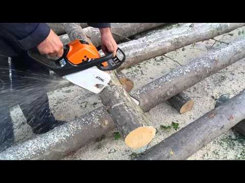 Drujba Stihl Ms211 la taiat lemne de fag - motofierastrau