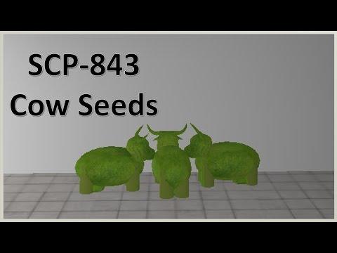 Roblox SCP 843 File Log