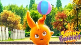 Cartoons for Children | SUNNY BUNNIES - VOLLYBALL | Funny Cartoons For Children