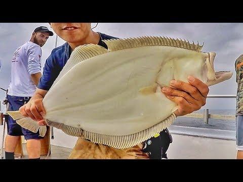 Fluke Fishing NJ - Jumbo Party Boat Summer Flounder Fishing 2019