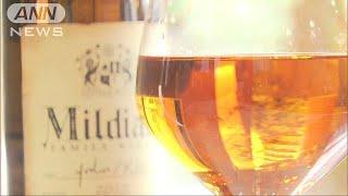 栃ノ心関が大関に昇進し、ふるさとのワインにも注目が集まっています。 ...