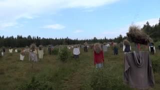 ゾンビの襲来とかかよ!フィンランドの道路沿いに大量に並んだカカシ集団