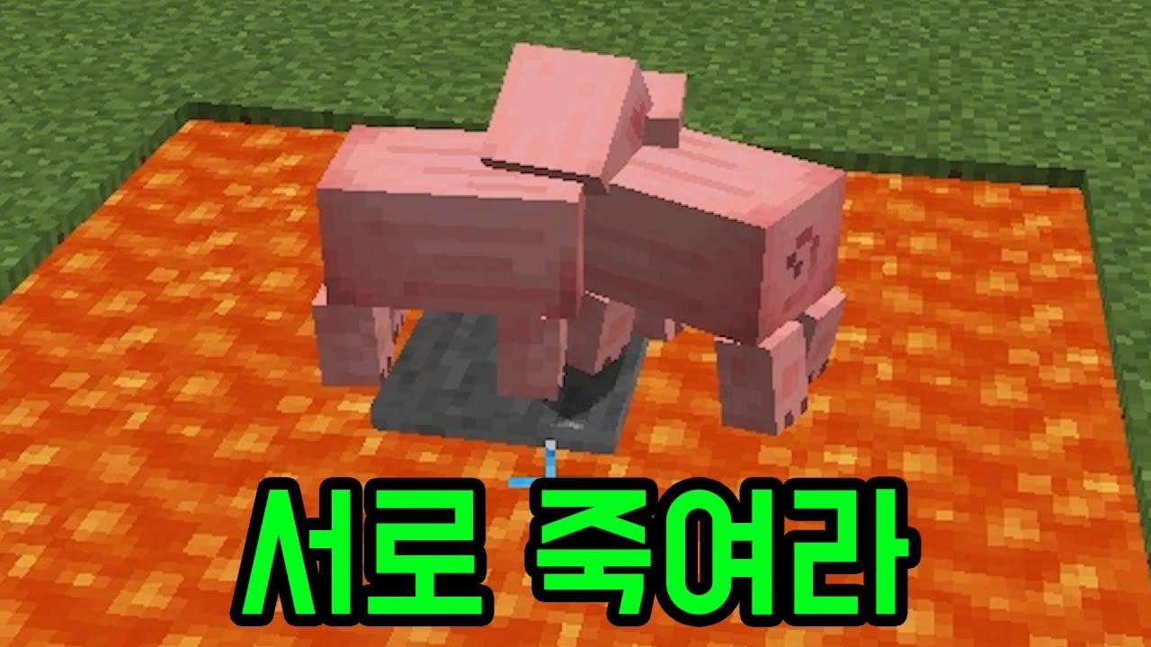 밀어내서 죽이는 돼지들(마인크래프트)