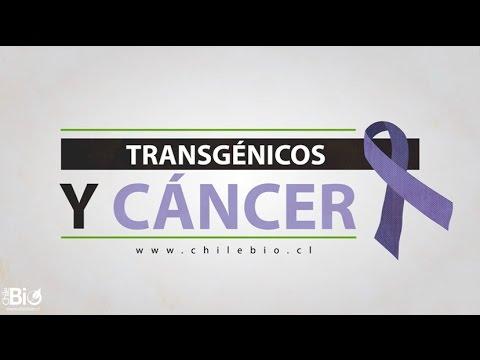"""Chilebio: """"Transgénicos y cáncer"""""""