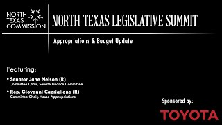 2020 North Texas Legislative Summit | Appropriations & Budget Update