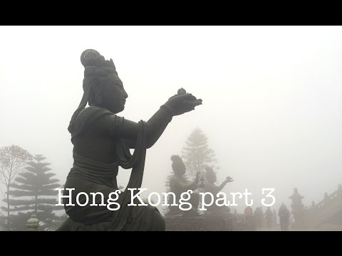 TRAVEL: HONG KONG | Part Three: Tian Tan Buddha, More Food!! & Mr Wongs