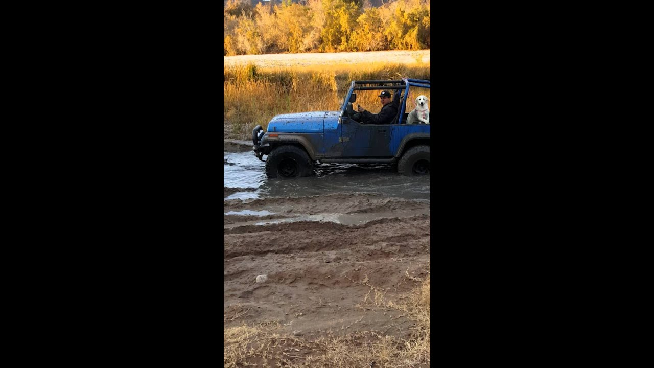 1993 jeep wrangler yj 4 cylinder  YouTube