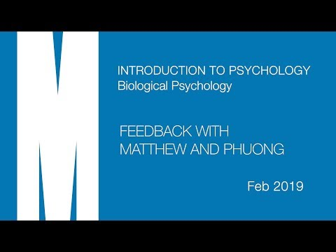 psych-intro-b:-feedback-from-matthew-and-phuong---feb-2019