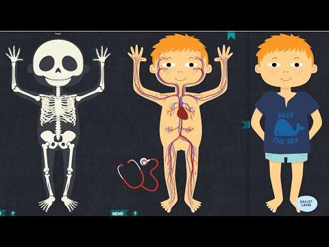 Das ist mein Körper - Anatomie App für Kinder (iPad, Macintosh)