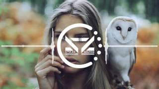 Venemy ft. Ayana - Follow You (Mendum Remix)