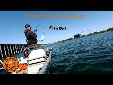 Spring Chinook Fishing   Willamette River Spring Chinook Salmon Fishing   Fishing Report May 2019