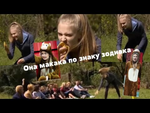 ленинград макака и орёл скачать mp3
