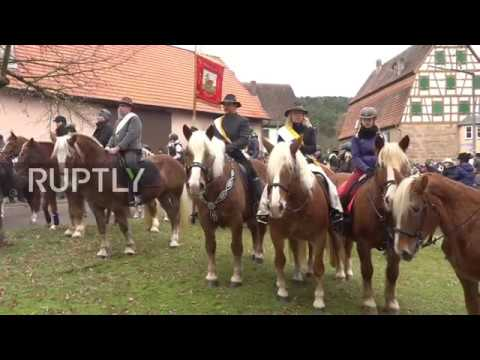 Germany: Horse-blessing ceremony trots off in Bavarian town of Spalt