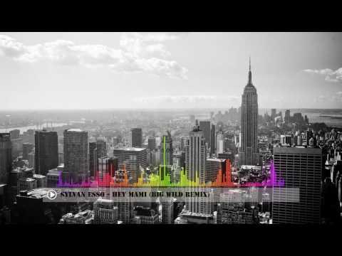 Hey Mami - Sylvan Esso (Big Wild Remix) [Copyright Free Music]