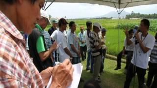Araw ng Magsasaka ng Laguna sa IRRI (Laguna farmers