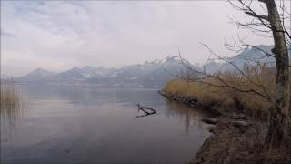 Villeneuve - Les Grangettes, Vaud, Suisse, 07-01-2017