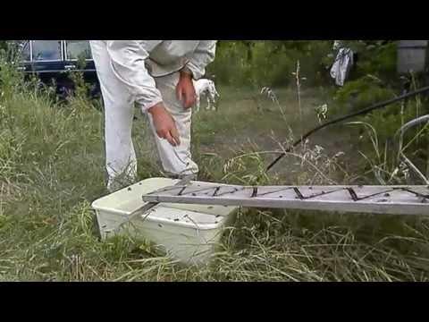 Наклонная поилка для пчел