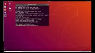 Modelsim Ubuntu 64 Bit