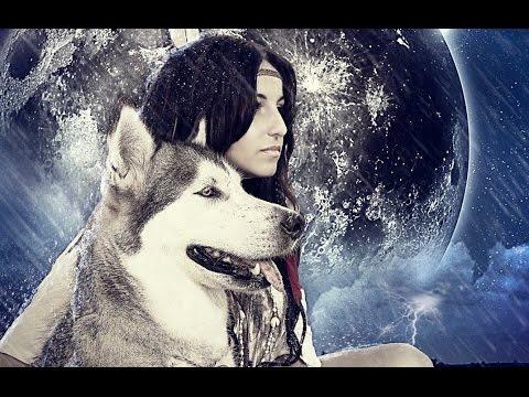 Tag de la mascota / conoce los alaskan malamute