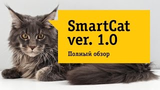 """Обзор на кота. Лучшее портативное многофункциональное устройство для дома.""""Супер кот"""""""