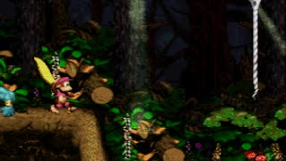 Donkey Kong Country 2 (SNES) - Gameplay - Ghostly grove 102%