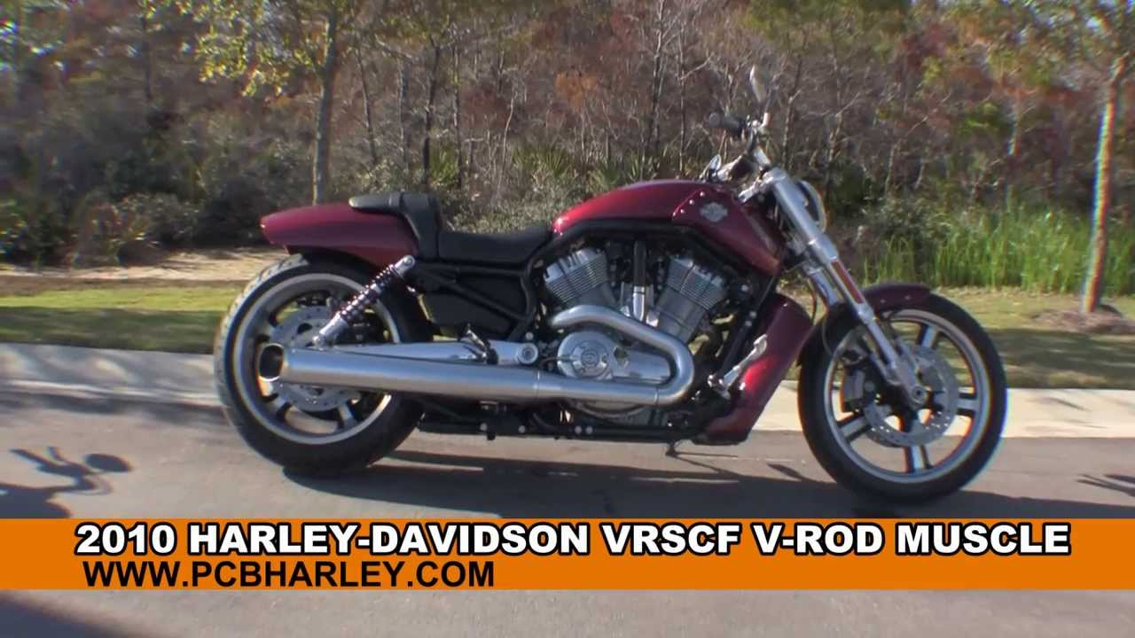 Used 2010 Harley Davidson V-Rod Muscle Motorcycle for sale - YouTube