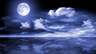 Deep Sleep Music 24/7, Calming Music, Sleep Meditation, Relaxing Music, Insomnia, Study, Spa, Sleep
