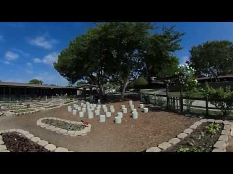 Community Roots Academy garden tour (360 degree view)