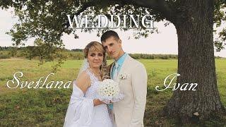 видео фотограф на свадьбу дмитров